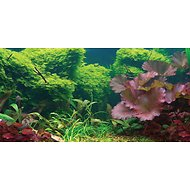 Sporn Static Cling Tropical Aquarium Background, Medium
