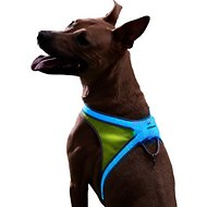 Noxgear LightHound LED Illuminated & Reflective Dog Harness, Large