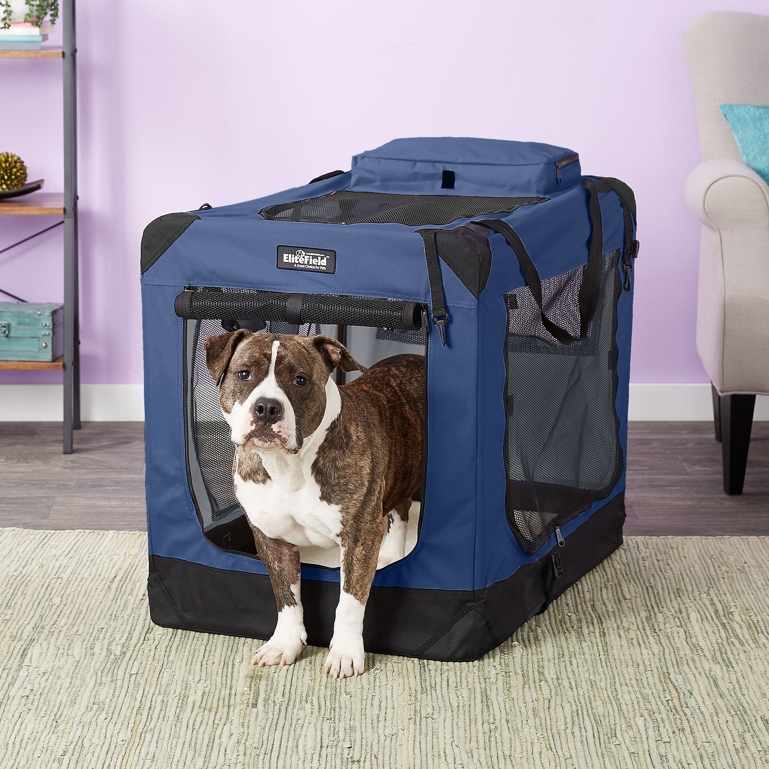 EliteField 3-Door Folding Soft-Sided Dog Crate, Blue, 36 ...