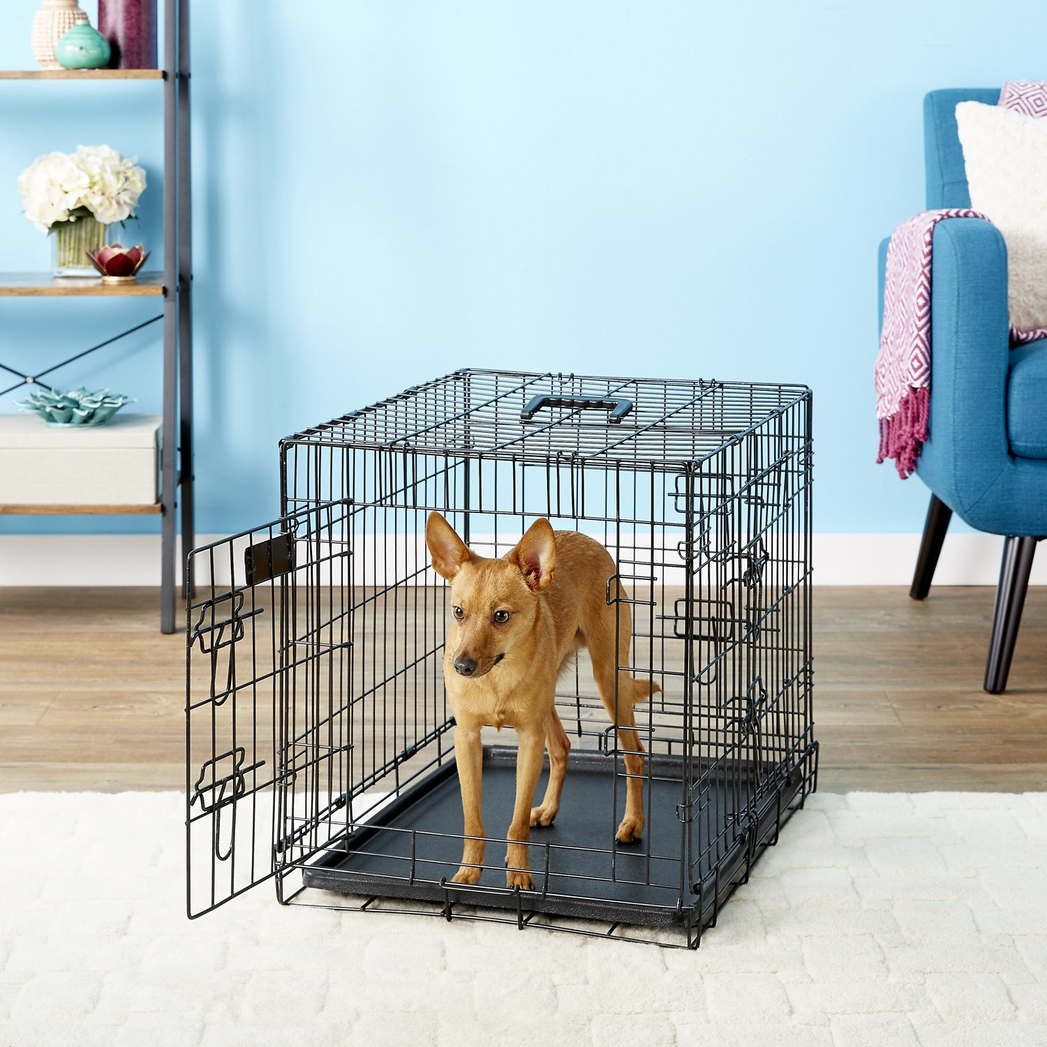 Elitefield 3 Door Folding Dog Crate With Divider 24 In Chewy