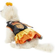 Rubie's Costume Company Monarch Butterfly Dog & Cat Costume, Small