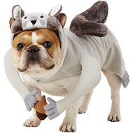 Rubie's Costume Company Squirrel Dog & Cat Costume, Medium