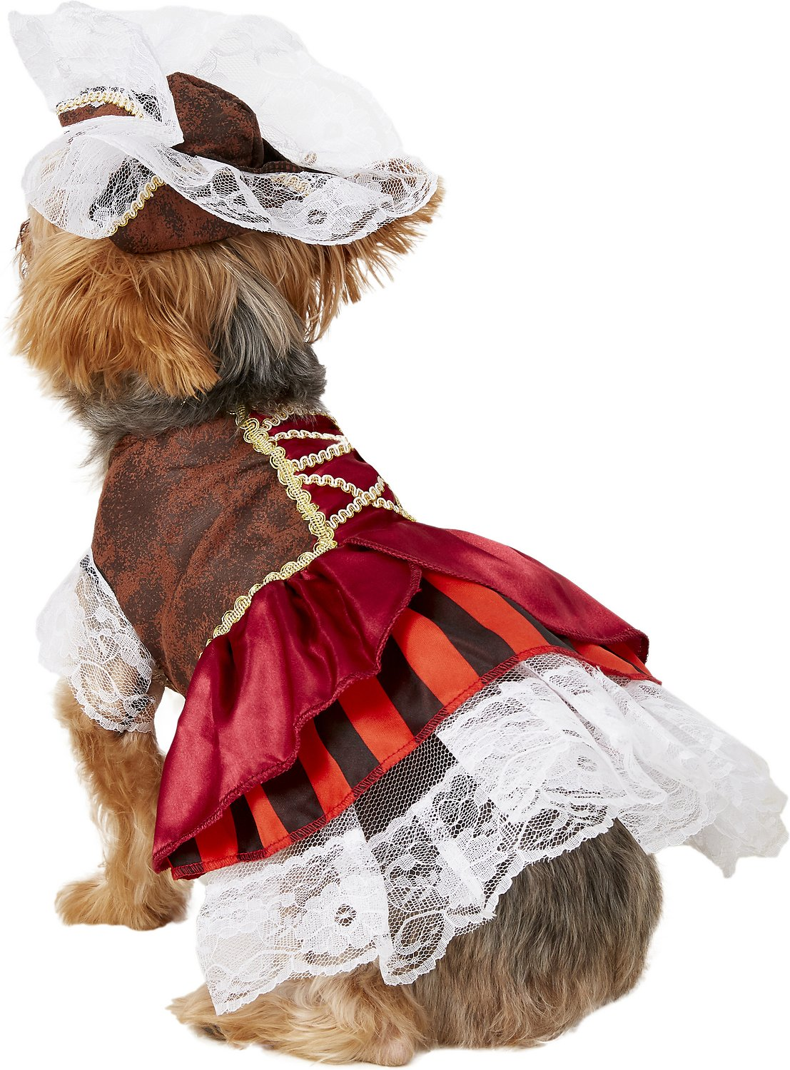 4c16b4e8263 Rubie s Costume Company Pirate Girl Dog   Cat Costume