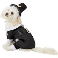 Rubie's Costume Company Pilgrim Dog & Cat Costume, Small
