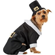 Rubie's Costume Company Pilgrim Dog & Cat Costume, Large