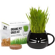 The Cat Ladies Organic Pet Grass Kit with Planter, Black
