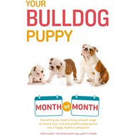 Your Bulldog Puppy Month by Month