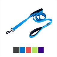 Waggin' Tails Soft & Thick Double Handle Dog Leash, Bright Blue