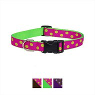 Sassy Dog Wear Dot Dog Collar, Medium, Fuchsia & Green