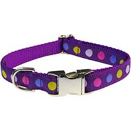 Sassy Dog Wear Purple Multi Dot Dog Collar, Medium