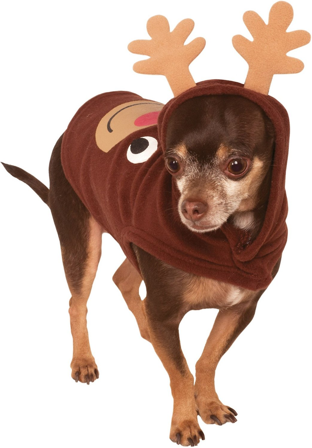 video  sc 1 st  Chewy.com : dog xmas costumes  - Germanpascual.Com