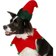 Rubie's Costume Company Elf Dog Hat with Bell, Small/Medium