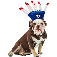 Rubie's Costume Company Menorah Dog Hat, Medium/Large
