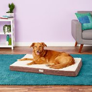 Petlinks Snooze Pad Convoluted Foam Dog & Cat Bed, Cream & Brown, Large