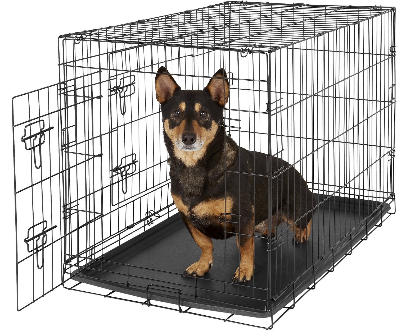 Oxgord double door folding wire dog crate 36 in for Double door with dog door