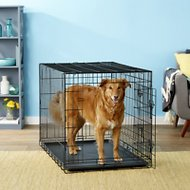 Paws & Pals Double-Door Folding Wire Dog Crate, 42-in