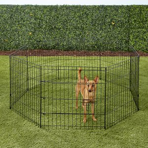 Paws & Pals Collapsible Wire Dog Exercise Pen