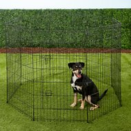 Paws & Pals Collapsible Wire Exercise Pen, 42-in