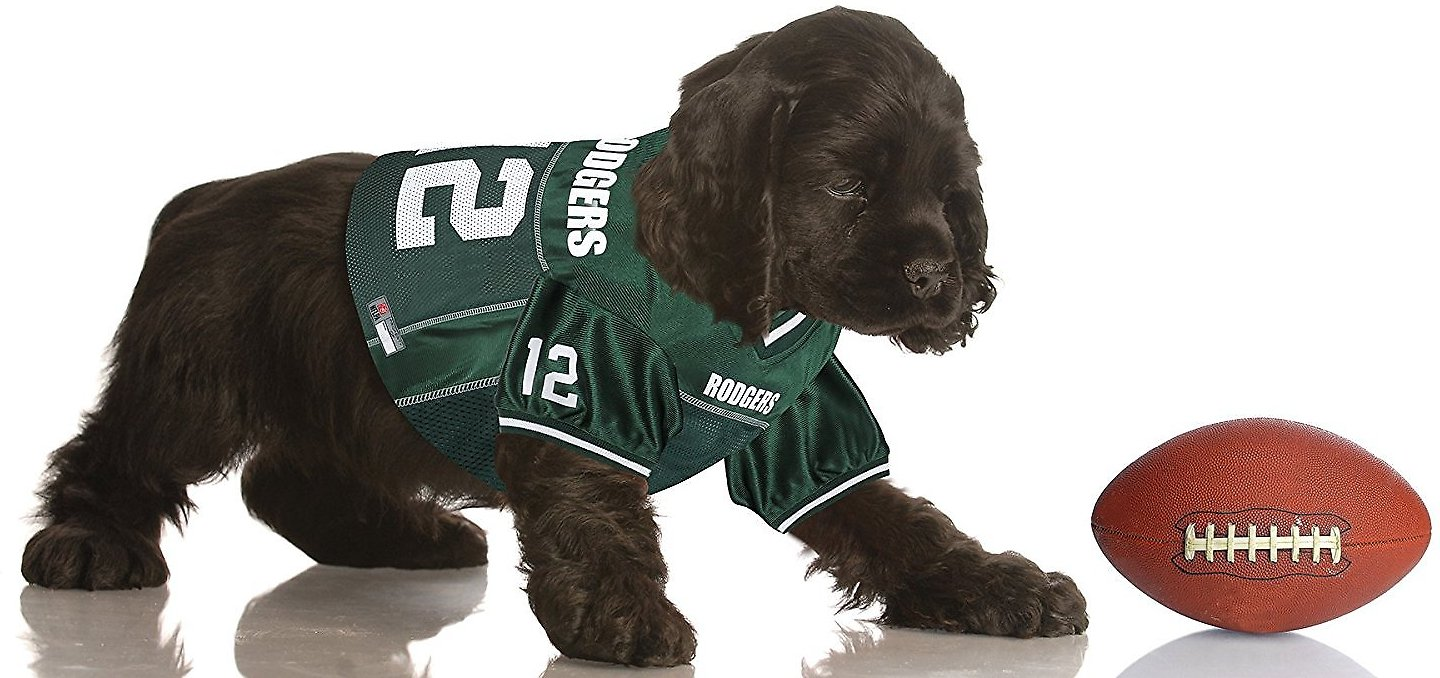 newest 18f25 15721 Pets First Aaron Rodgers Mesh Dog & Cat Jersey, Small
