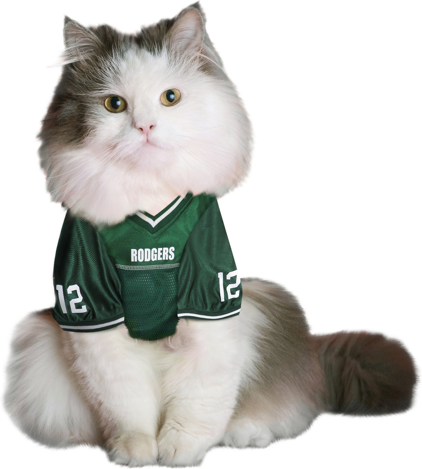 newest c69ec e6d88 Pets First Aaron Rodgers Mesh Dog & Cat Jersey, Small
