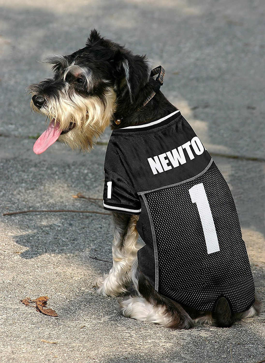 9836788b4 Pets First Cam Newton Mesh Dog & Cat Jersery, X-Small. Roll over image to  zoom in. video