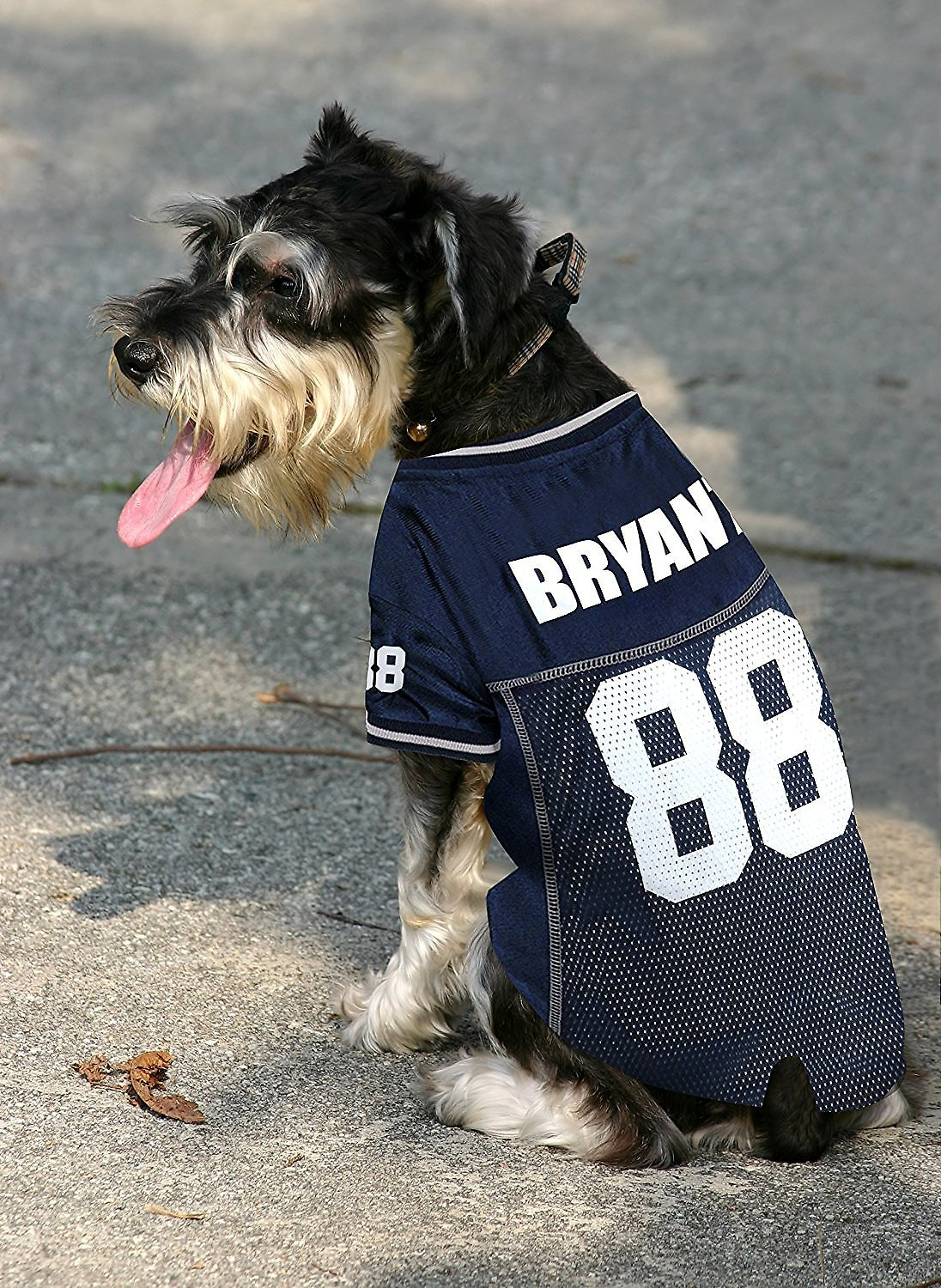 f844b400d Pets First Dez Bryant Mesh Dog & Cat Jersey, Medium - Chewy.com