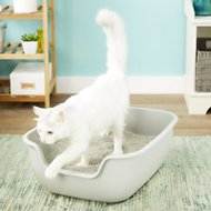 PetFusion BetterBox Non-Stick Cat Litter Box, 1 pack