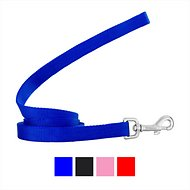Frisco Solid Nylon Dog Leash, Blue, 6-ft, 3/4-in