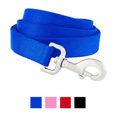 Frisco Solid Nylon Dog Leash, Blue, 4-ft, 1-in