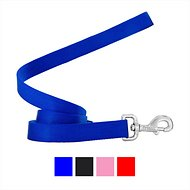 Frisco Solid Nylon Dog Leash, Blue, 6-ft, 1-in