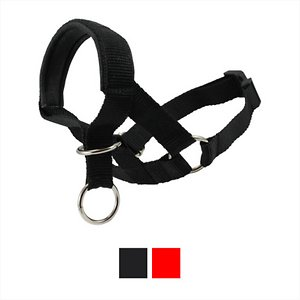 Dogs My Love Nylon Dog Headcollar, Black, X-Small: 7.5 to 9.5-in neck, 5/8-in wide; Gently restrain your pooch with the Dogs My Love Head Halter Dog Collar. It's designed to give you the control you need to keep your energetic pal from pulling, jumping or lunging, while allowing plenty of freedom for him to pant and yawn unobstructed. Made of high-quality nylon that's both comfortable and durable enough for daily use, it's your go-to halter collar for all your walks, strolls, and jaunts! For added doggy-approved comfort, the nose strap is layered with soft neoprene. Plus, it comes in different sizes to accommodate dogs of all breeds and sizes.