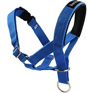 Dogs My Love Halter Dog Head Collar, Blue, Large