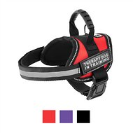 Doggie Stylz Therapy Dog In Training Dog Harness, Red, XX-Small