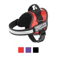 Doggie Stylz Therapy Dog In Training Dog Harness, Red, Medium