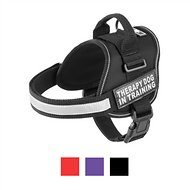 Doggie Stylz Therapy Dog In Training Dog Harness, Black, Medium