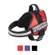 Doggie Stylz Therapy Dog In Training Dog Harness, Red, Large