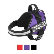 Doggie Stylz Therapy Dog In Training Dog Harness, Large, Purple