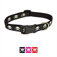 Sassy Dog Wear Reflective Skull Dog Collar, Medium, Black