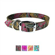 OmniPet Paisley Leather Dog Collar, 12-inch, Chocolate