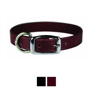 OmniPet Latigo Leather Dog Collar
