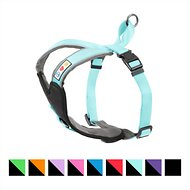 Pawtitas Reflective Padded Dog Harness, Teal, Medium/Large