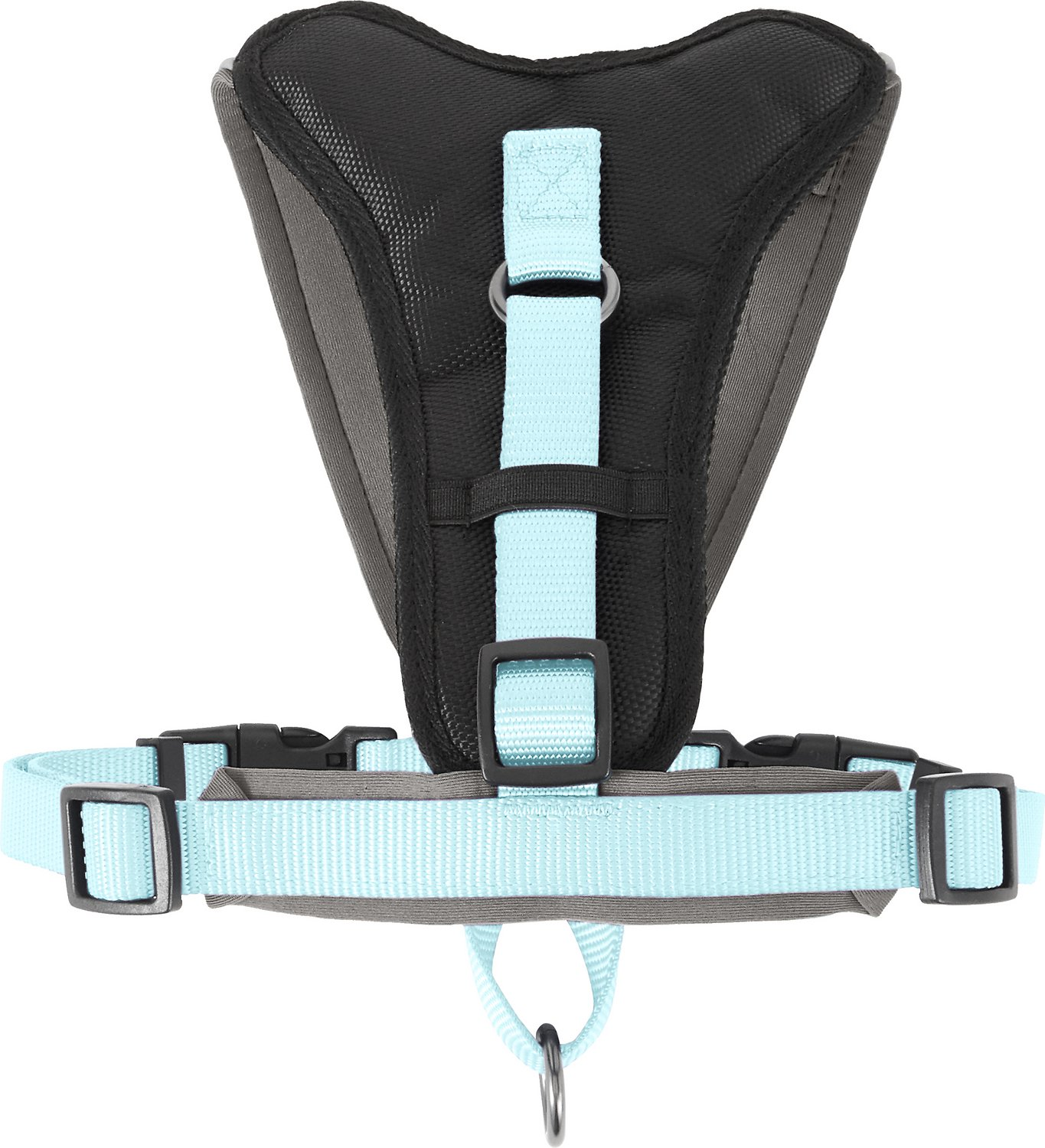 Pawtitas Reflective Padded Dog Harness, Teal, Medium/Large - Chewy.com