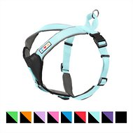 Pawtitas Reflective Padded Dog Harness, Teal, Large/X-Large