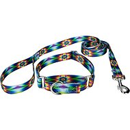 Country Brook Design Tie-Dye Flowers Martingale Dog Collar & Leash, X-Large