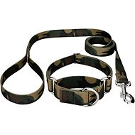 Country Brook Design Martingale Dog Collar & Leash, Woodland Camo, Small