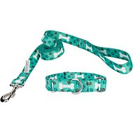 Country Brook Design Martingale Dog Collar & Leash, Oh My Dog, Medium