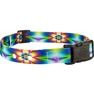 Country Brook Design Replacement Fence Receiver Dog Collar, Tie-Dye Flowers