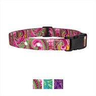 Country Brook Design Replacement Fence Receiver Dog Collar, Pink Paisley