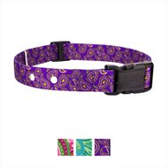 Country Brook Design Replacement Fence Receiver Dog Collar, Purple Paisley