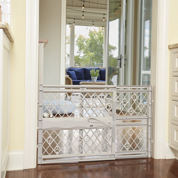 Mypet Paws Portable Pet Gate Light Gray Chewy Com